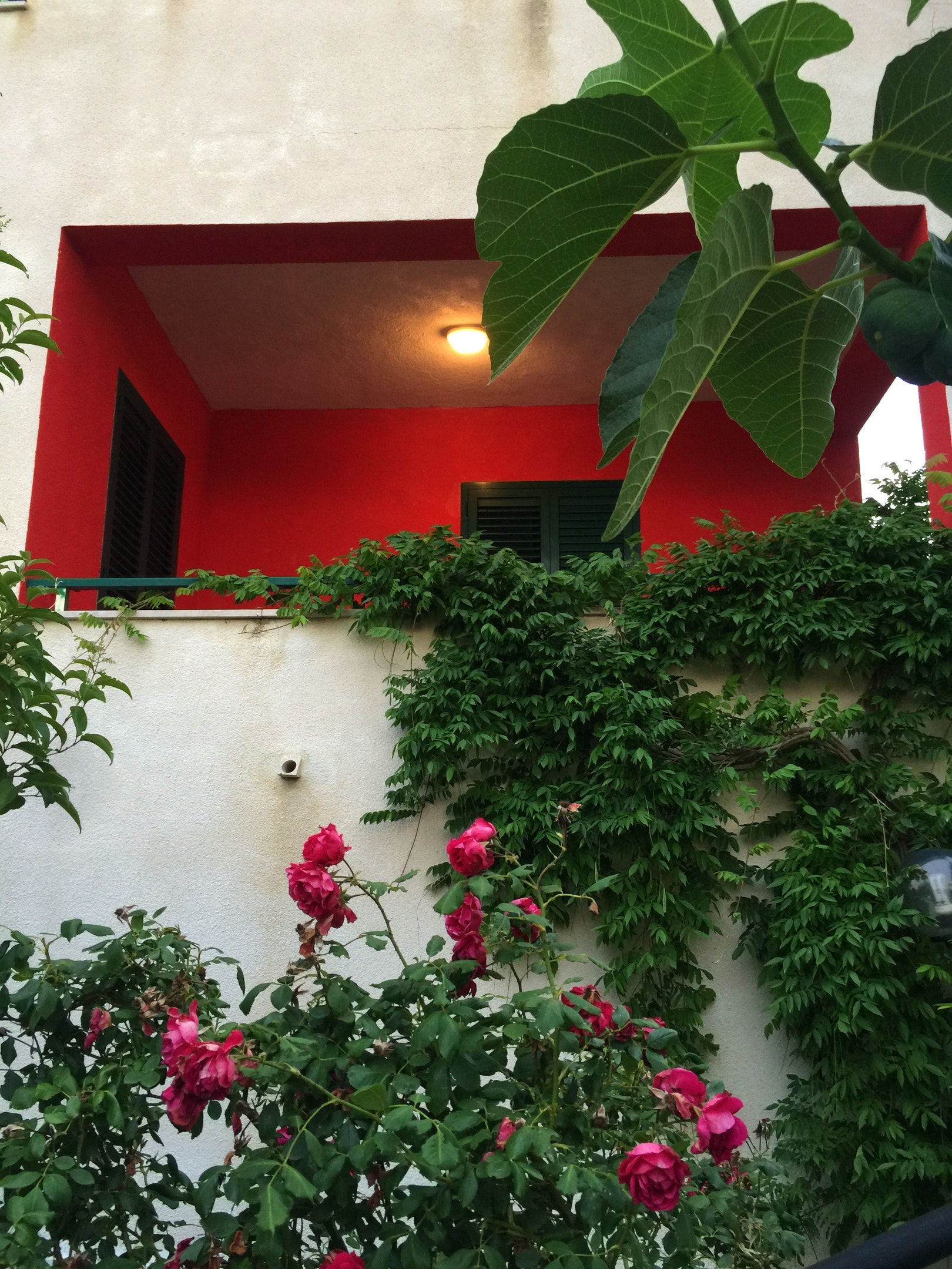 Ferienhaus Haus mit 3 Schlafzimmern in Montenero di bisaccia mit herrlichem Meerblick und eingezäunte (2524275), Montenero di Bisaccia, Campobasso, Molise, Italien, Bild 11