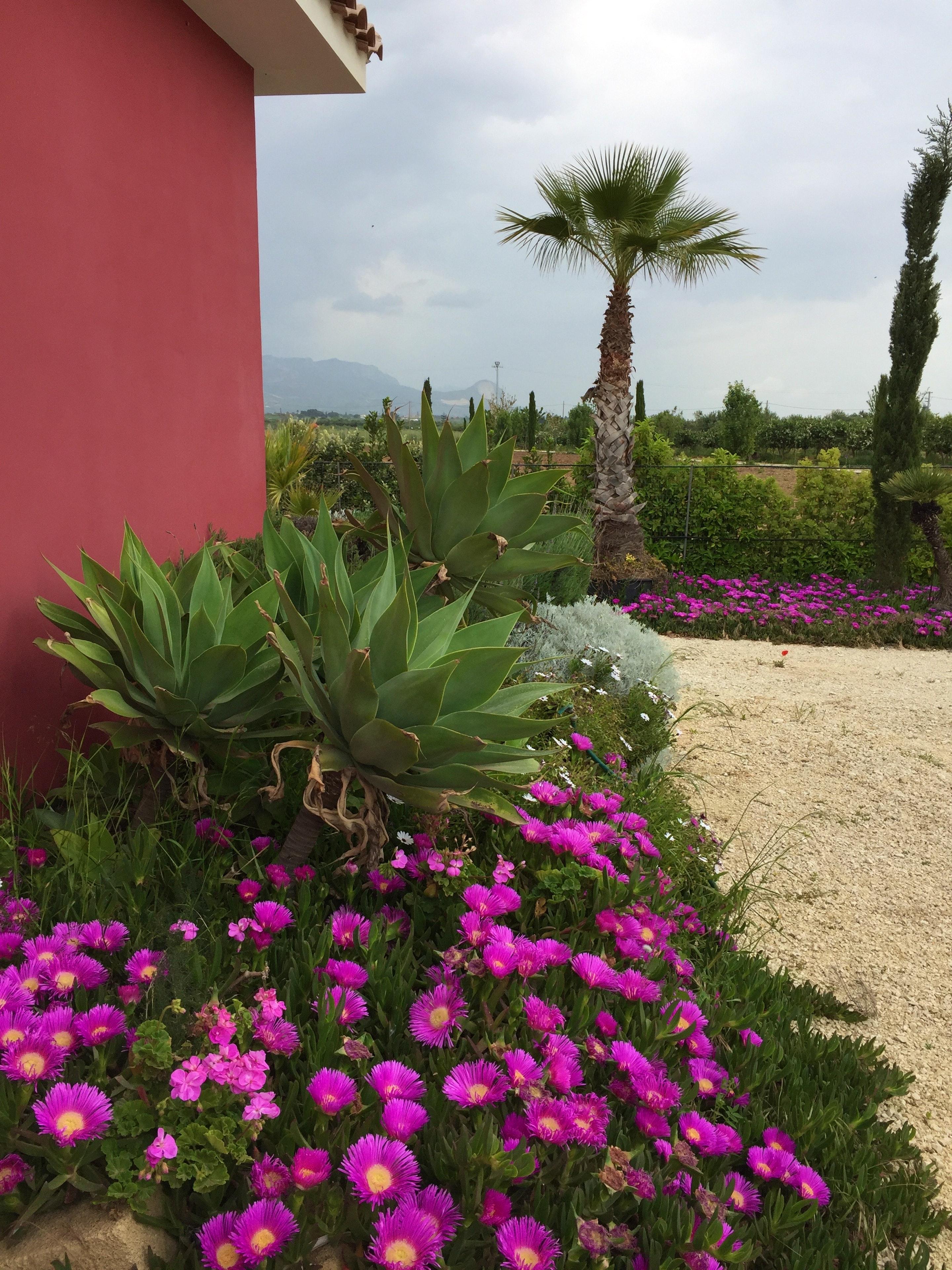 Ferienhaus Villa mit 2 Schlafzimmern in Sciacca mit herrlichem Meerblick, eingezäuntem Garten und W-L (2201303), Sciacca, Agrigento, Sizilien, Italien, Bild 9