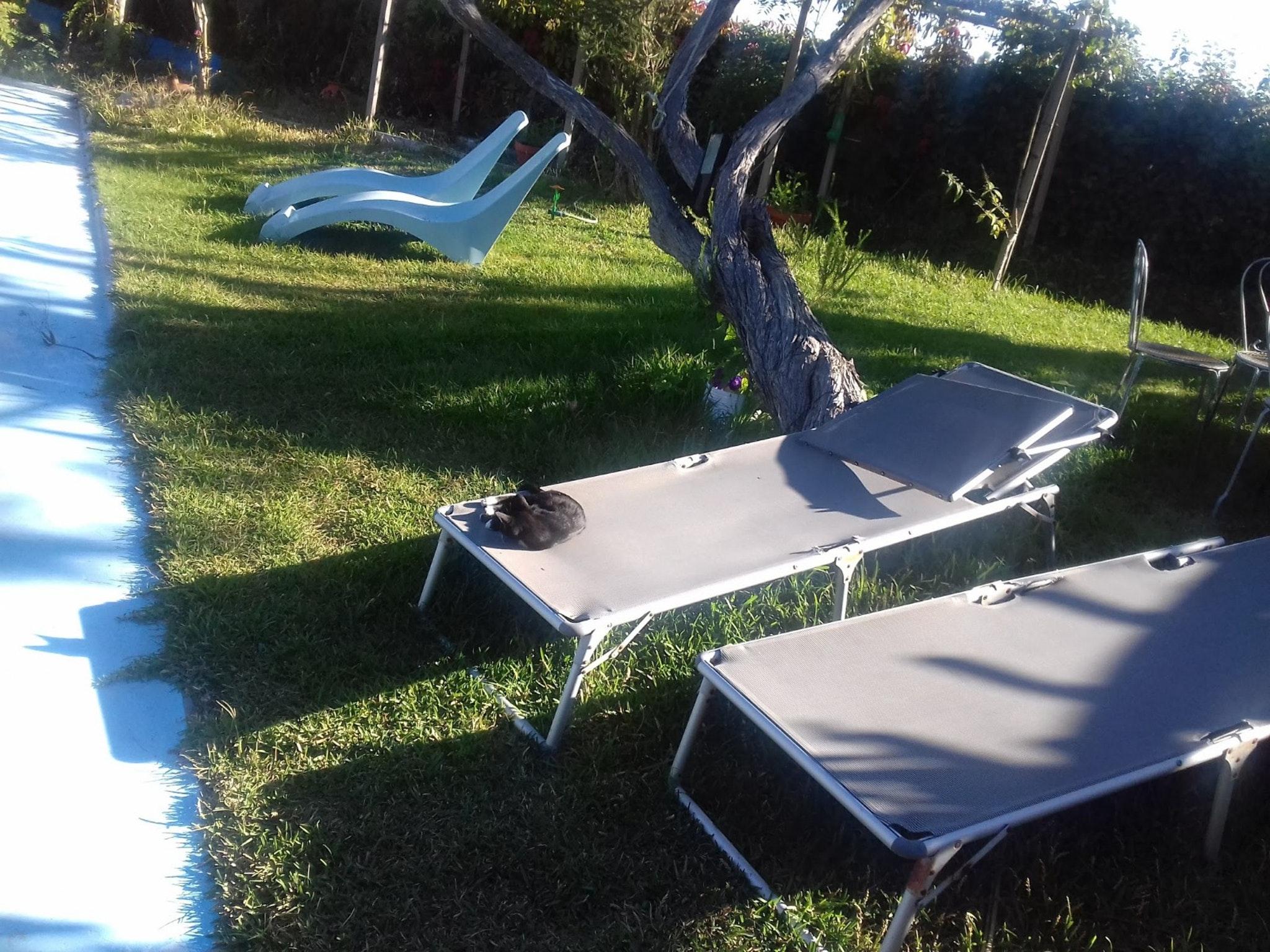 Holiday apartment Studio in Nazaré mit Pool, möbliertem Garten und W-LAN - 7 km vom Strand entfernt (2410449), Nazaré, Costa de Prata, Central-Portugal, Portugal, picture 37