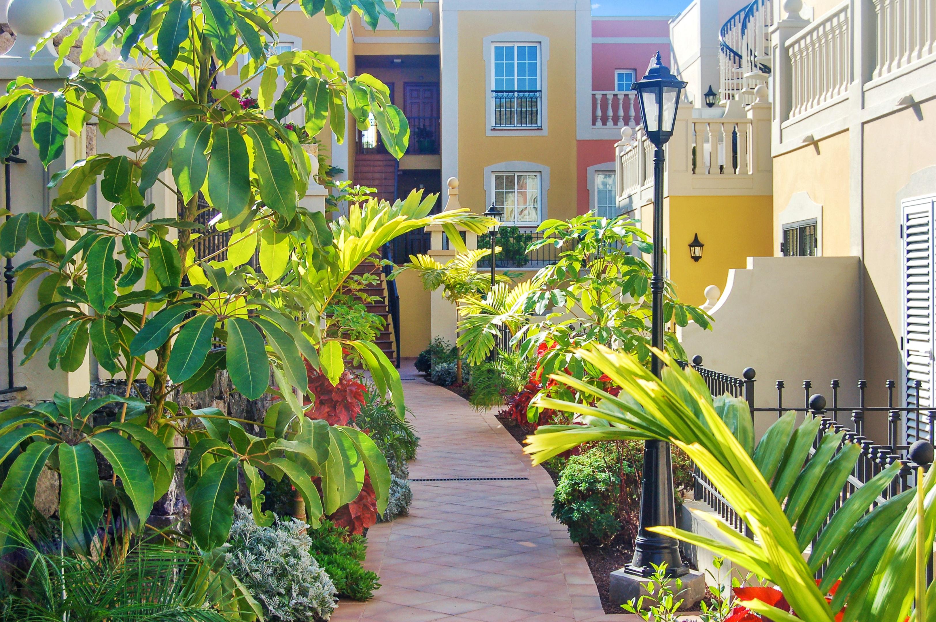 Appartement de vacances Wohnung mit 2 Schlafzimmern in Palm-Mar mit Pool, möblierter Terrasse und W-LAN - 800 m vo (2201692), Palm-Mar, Ténérife, Iles Canaries, Espagne, image 21