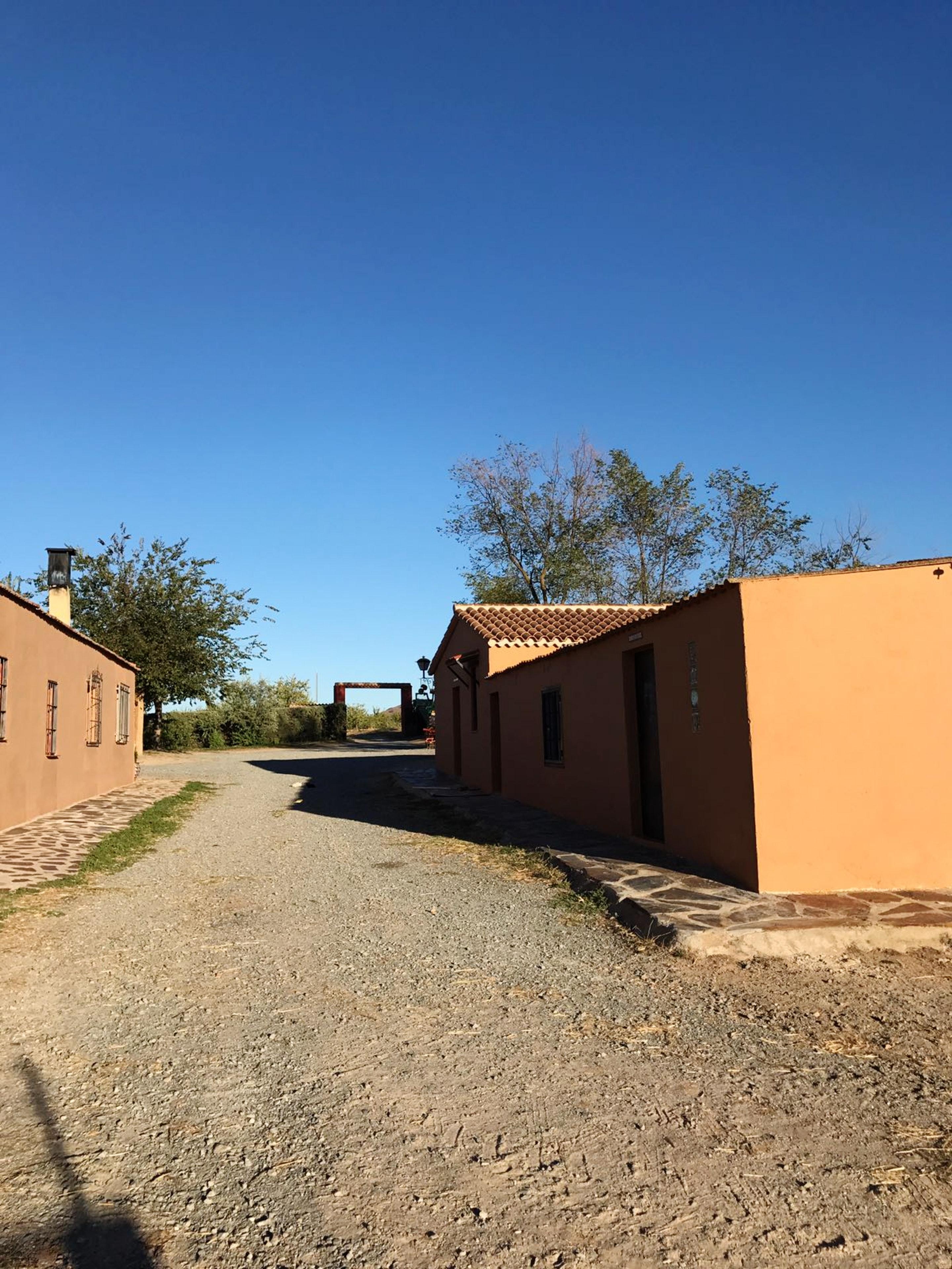 Ferienhaus Haus mit 7 Schlafzimmern in Burguillos de Toledo mit privatem Pool und eingezäuntem Garten (2299203), Burguillos de Toledo, Toledo, Kastilien-La Mancha, Spanien, Bild 39
