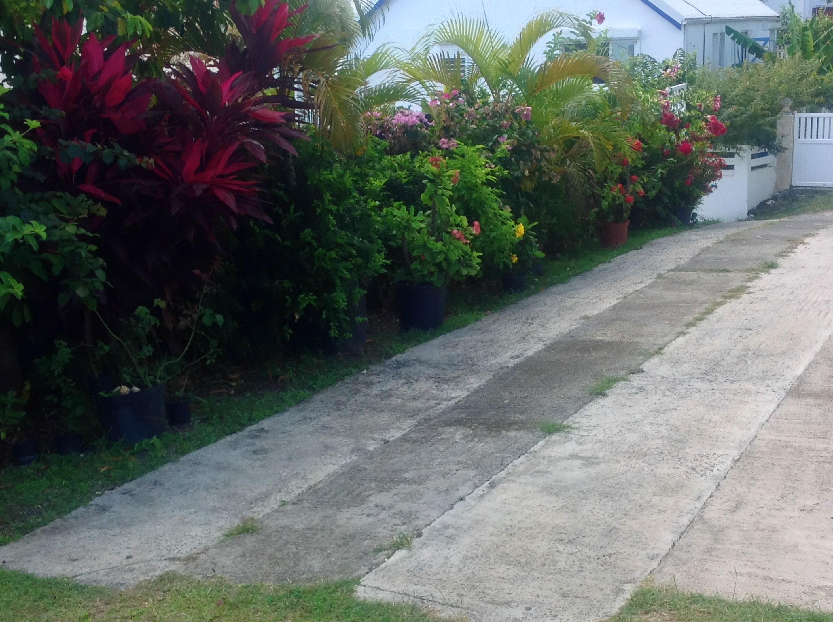 Wohnung mit einem Schlafzimmer in Saint-Fran&ccedi Ferienwohnung in Guadeloupe