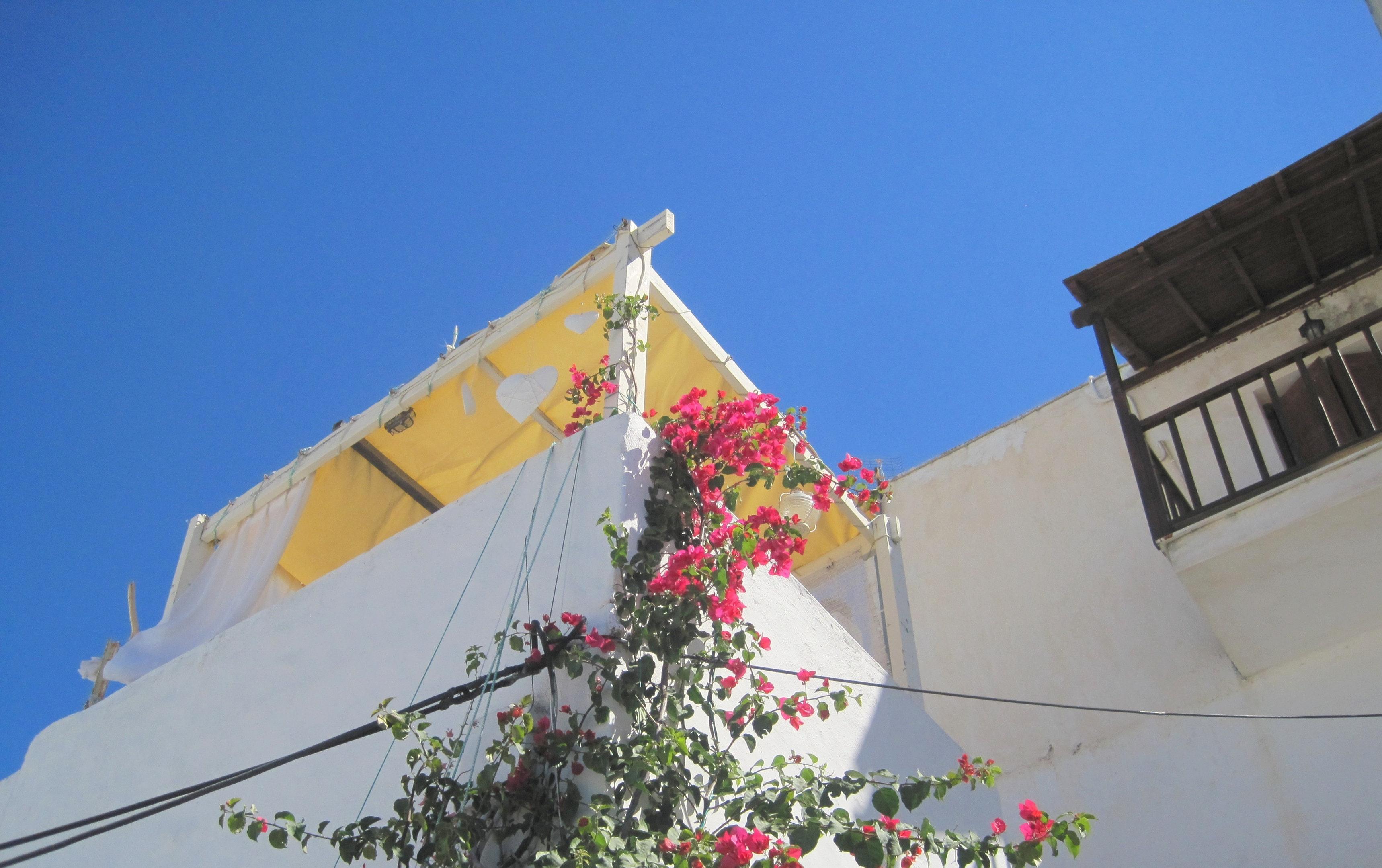 Ferienhaus Haus mit einem Schlafzimmer in Skyros mit toller Aussicht auf die Berge, möblierter Terras (2201799), Skyros, Skyros, Euböa, Griechenland, Bild 23