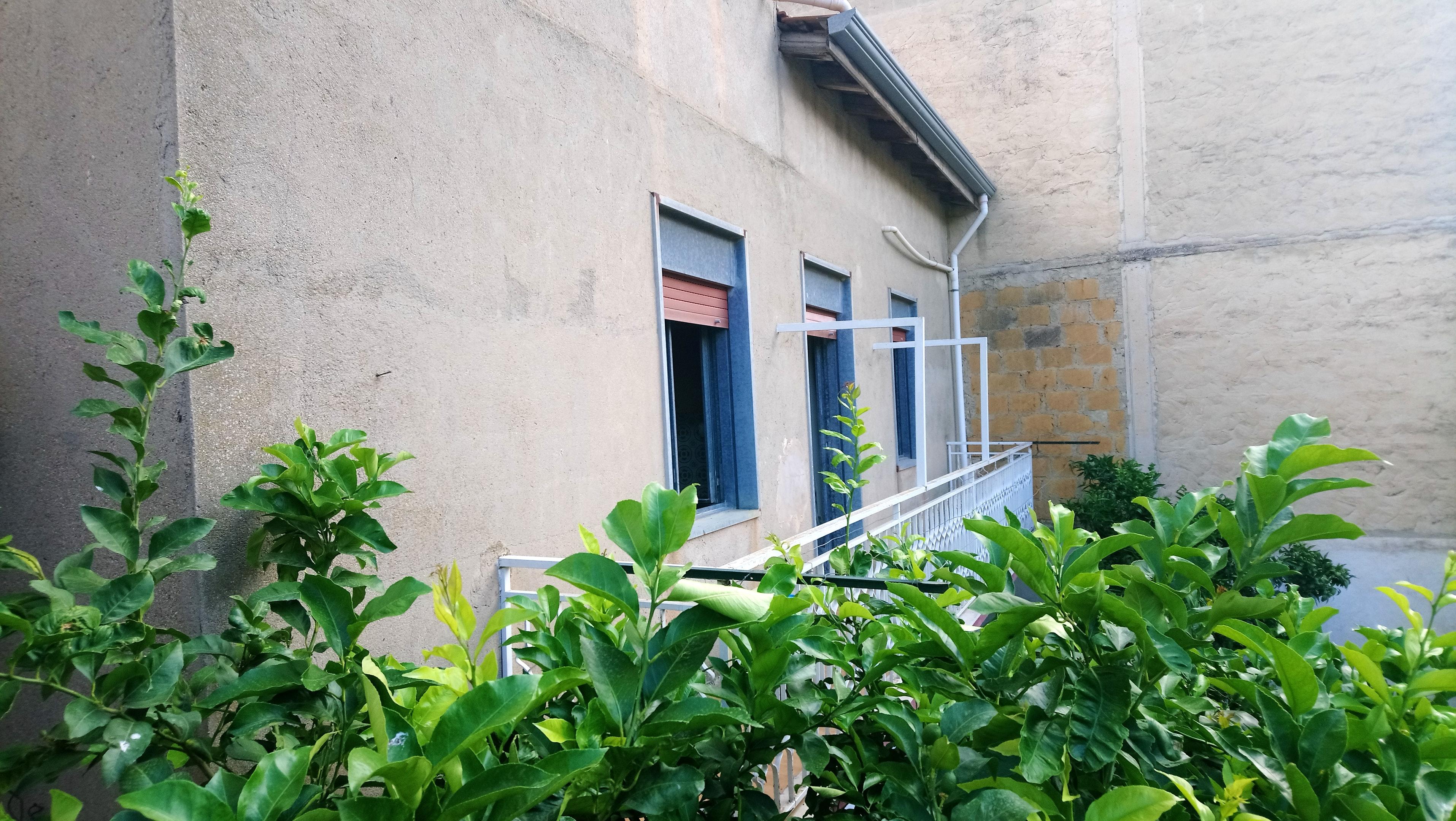 Holiday apartment Wohnung mit 2 Schlafzimmern in Villalba mit toller Aussicht auf die Berge und eingezäuntem (2450668), Villalba, Caltanissetta, Sicily, Italy, picture 18