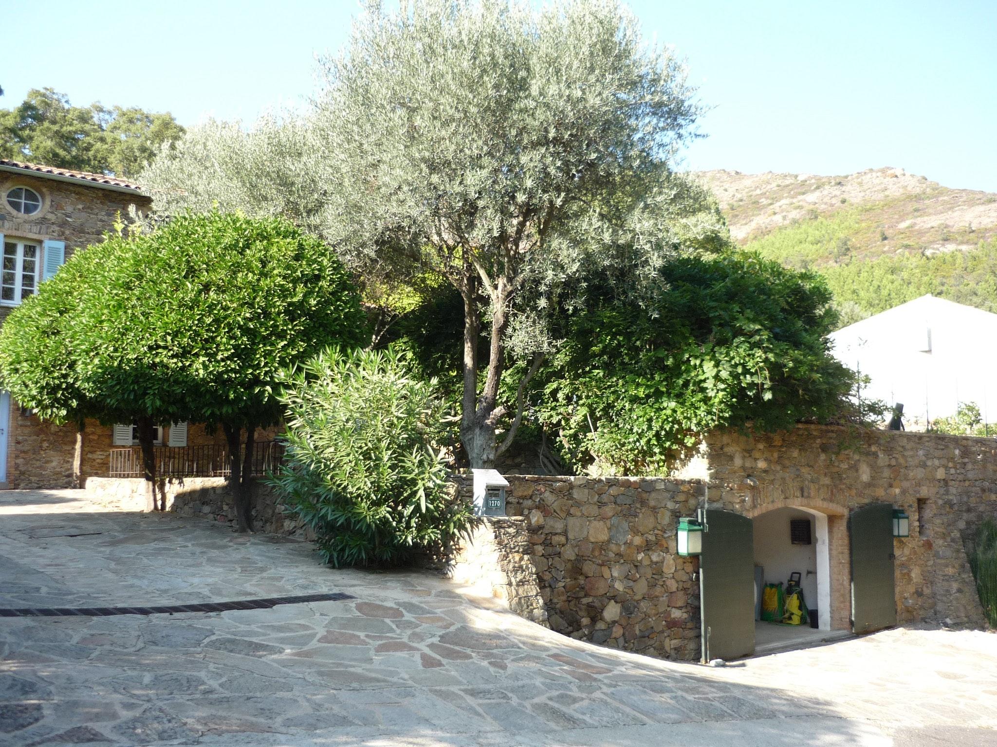 Maison de vacances Villa mit 5 Zimmern in La Garde-Freinet mit privatem Pool, Garten und W-LAN - 20 km vom St (2339879), La Garde Freinet, Côte d'Azur, Provence - Alpes - Côte d'Azur, France, image 25