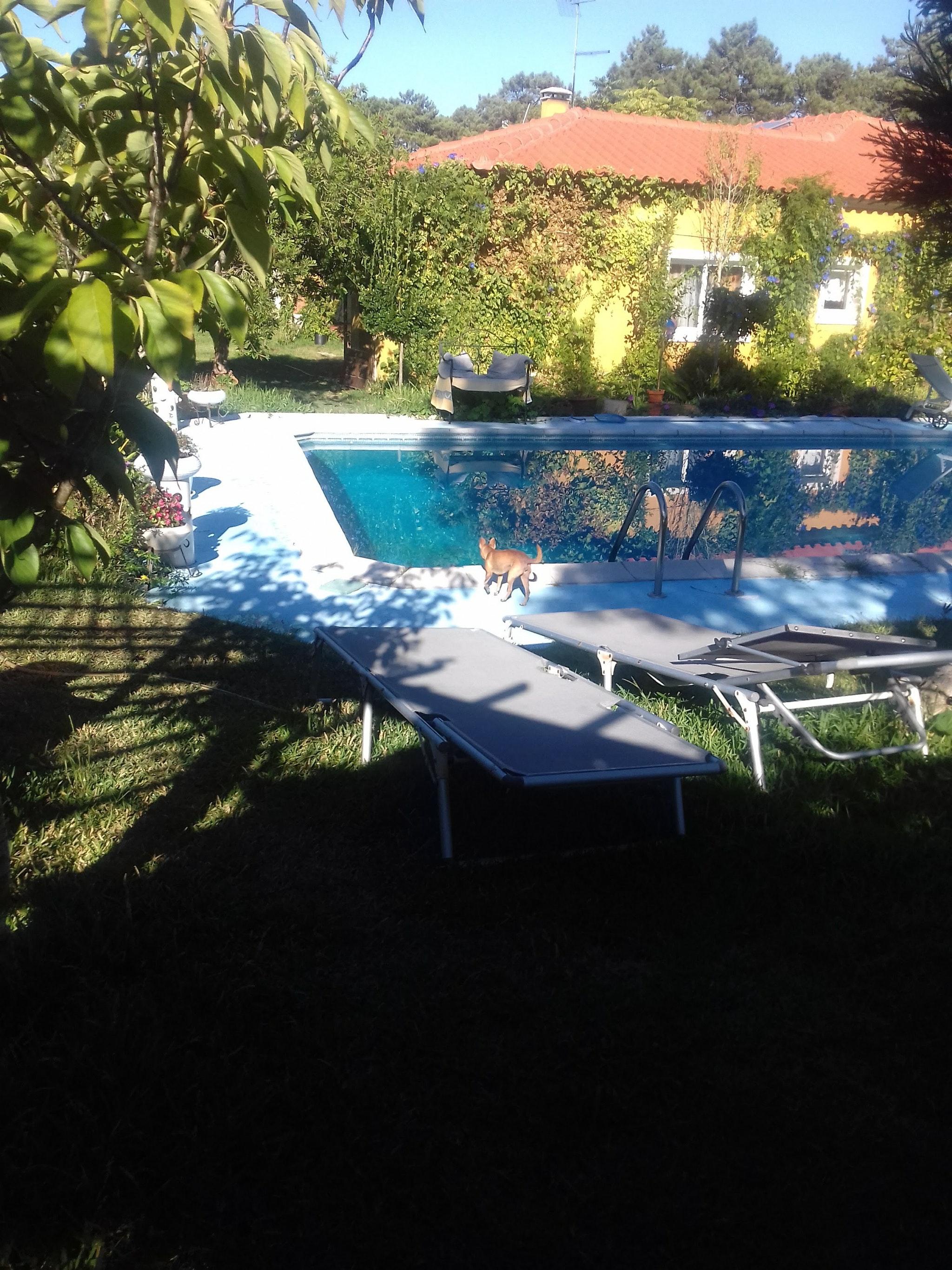 Holiday house Haus mit einem Schlafzimmer in Nazaré mit Pool, eingezäuntem Garten und W-LAN - 7 km vom S (2410448), Nazaré, Costa de Prata, Central-Portugal, Portugal, picture 40