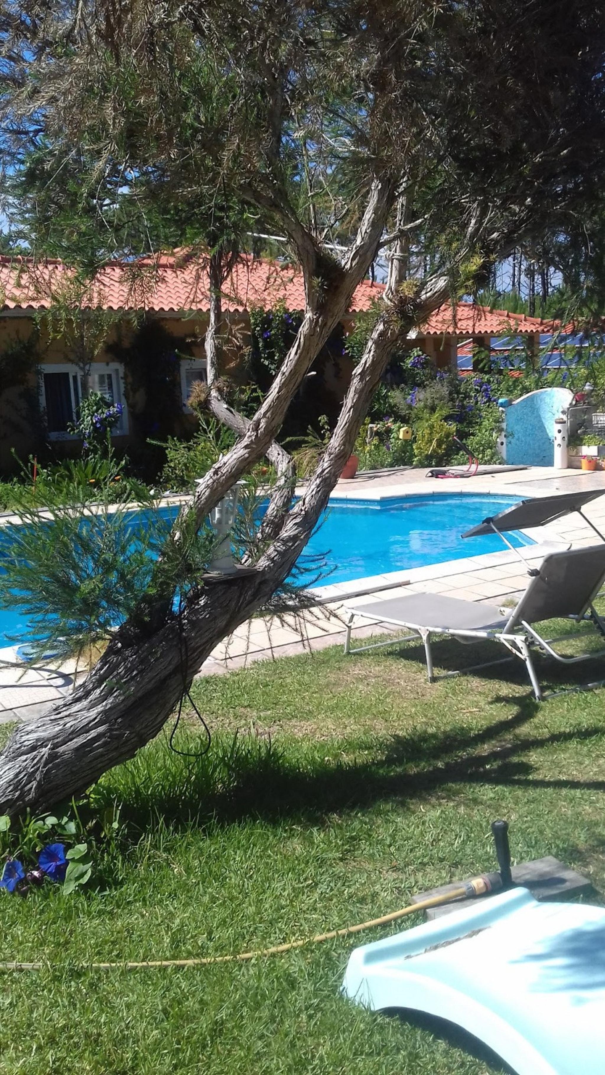 Holiday apartment Studio in Nazaré mit Pool, möbliertem Garten und W-LAN - 7 km vom Strand entfernt (2410449), Nazaré, Costa de Prata, Central-Portugal, Portugal, picture 35