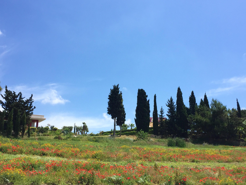 Ferienhaus Villa mit 2 Schlafzimmern in Sciacca mit herrlichem Meerblick, eingezäuntem Garten und W-L (2201303), Sciacca, Agrigento, Sizilien, Italien, Bild 10
