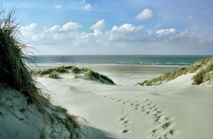 Zomersluiting Hoor Friesland