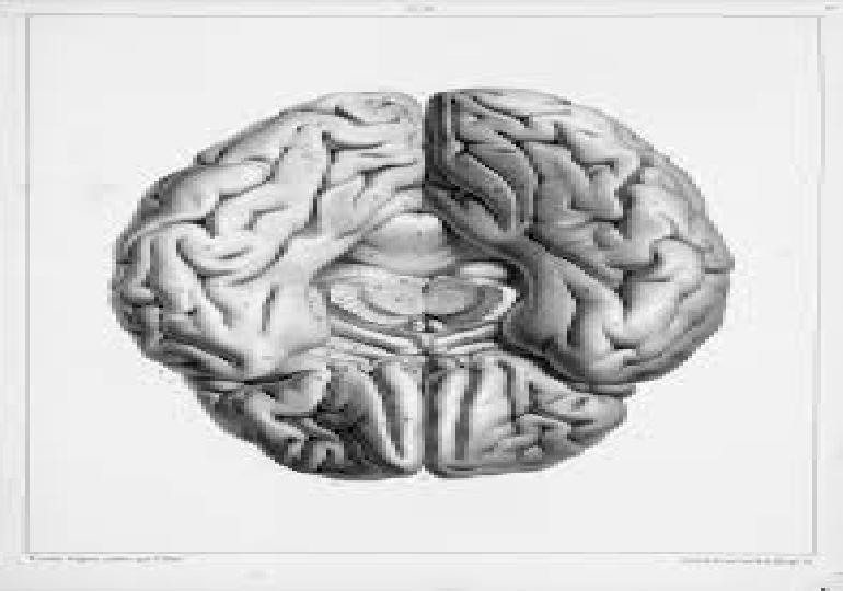 Il potere dei ricordi - 12 - Il perfezionismo nevrotico, seconda parte, del 6 giugno 2019