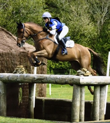 Photo - Knockavardagh Boy