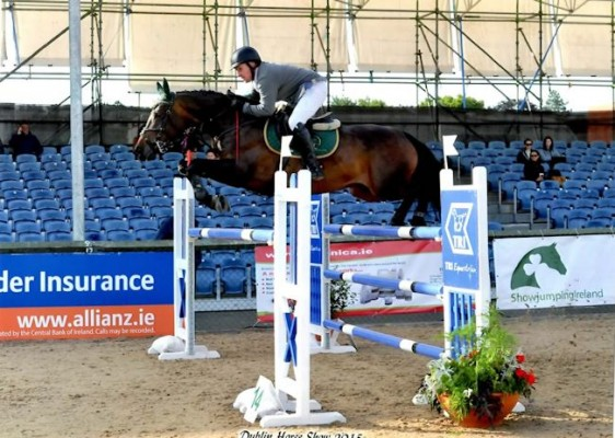 Photo - 1.35m Young Rider Horse