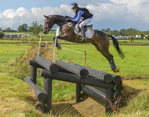 Photo - TOP CLASS EVENT PONY CLONALTRA ACORN