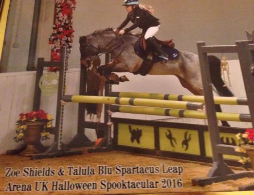 Photo - Shields Blu Spartacus Leap