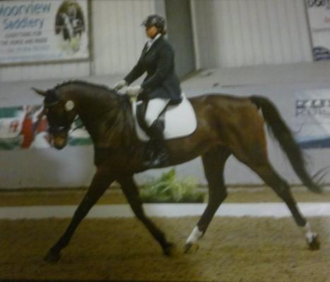 Photo - Clare Farmer Equestrian