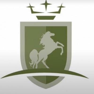 Photo - Verdis Sport Horses