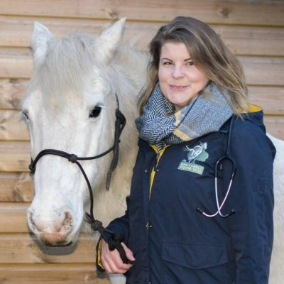 Photo - New Forest  Equine Vets