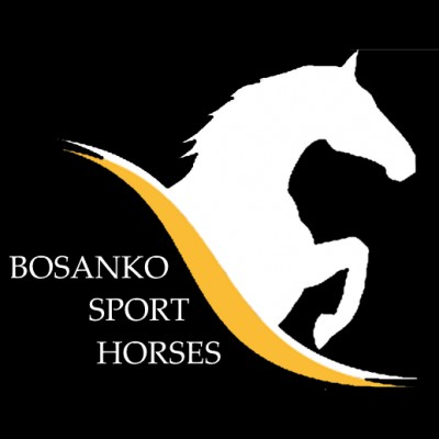 Photo - Bosanko Sport Horses
