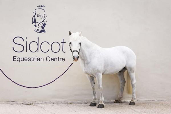 Photo - Sidcot Equestrian Centre