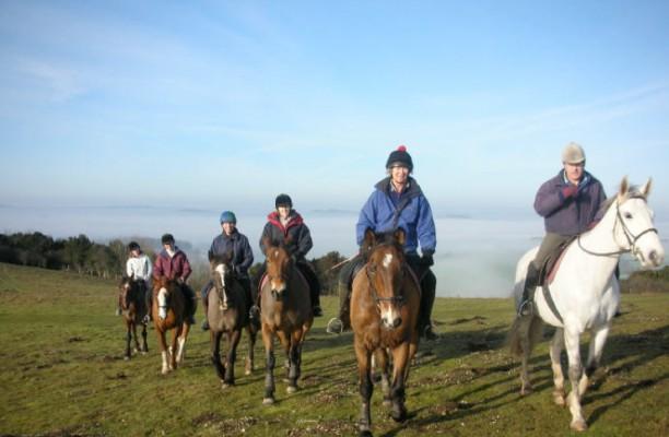 Photo - Stockbridge Riding Club & Livery Service Ltd.