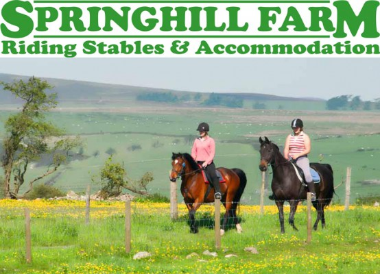 Photo - Springhill Farm Riding Stables