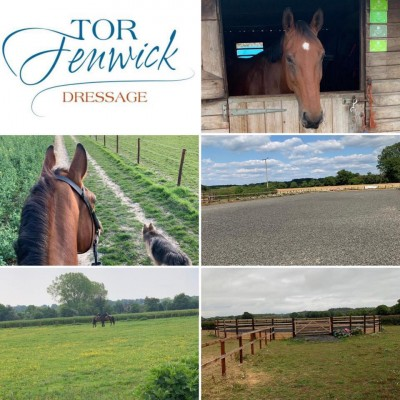 Photo - Hale Farm Equestrian