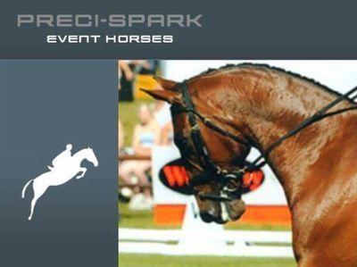 Photo - Preci Spark Event Horses