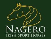 Photo - Nagero Irish Sport Horses