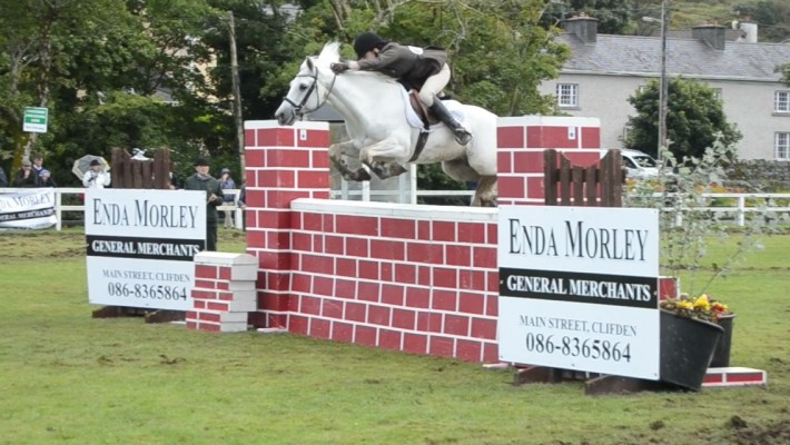 Photo - Diamonds Equine and Connemara Performance Ponies - Renvyle