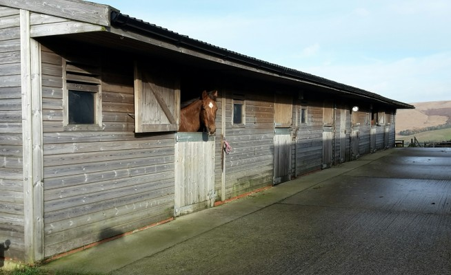 Photo - Belle Vue Farm and Livery Stables