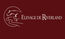 Photo - Elevage Riverland
