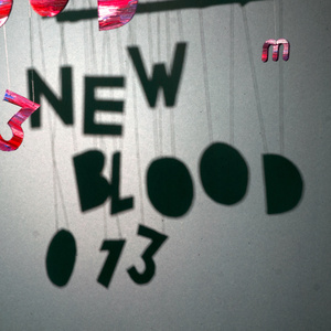 Various Artists - New Blood 013