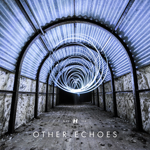 Other Echoes  - Run And Hide