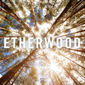 Etherwood – Etherwood