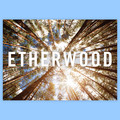 Etherwood Album Poster