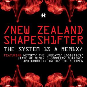The System Is A Remix