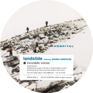 Landslide - Incurable Voices