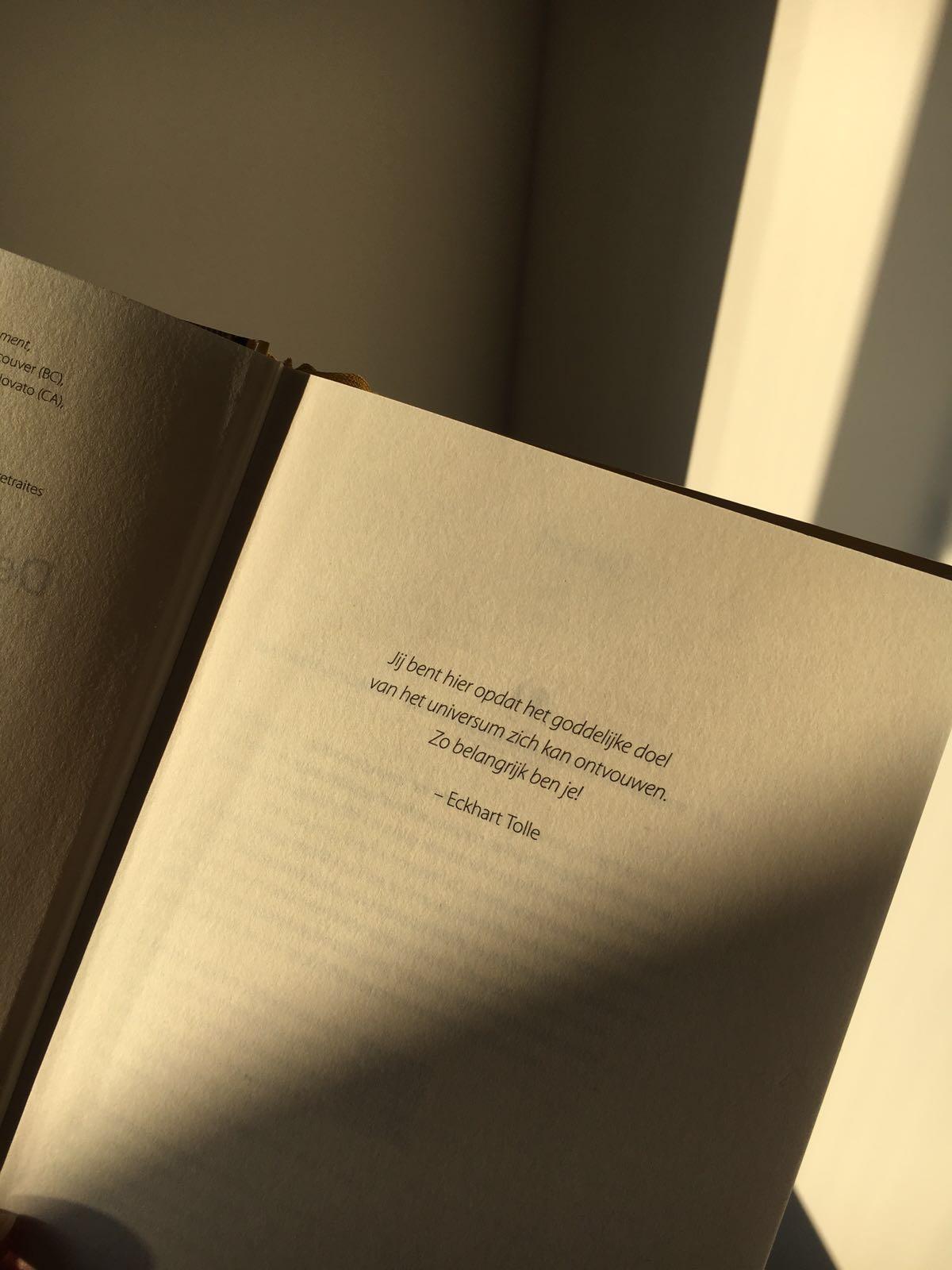 Boek Citaten Leven : Meest inspirerende quotes uit het boek de kracht van het nu