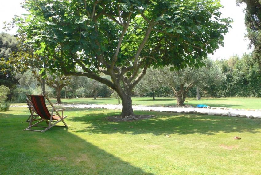 Masia Castell d´Empordà Jardin