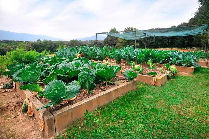 Casa Rural Venta Garrotxa Huerto