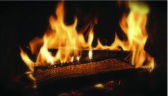 Blog Images Firewood 01