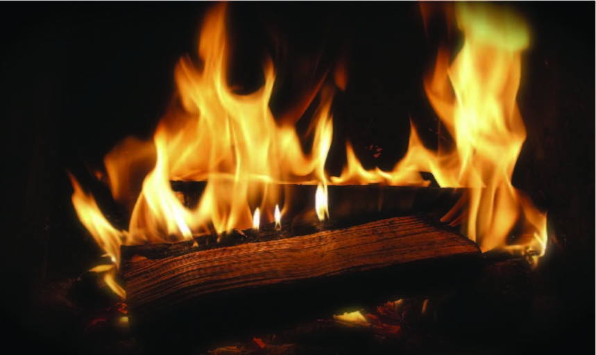 Blog Images Firewood 02