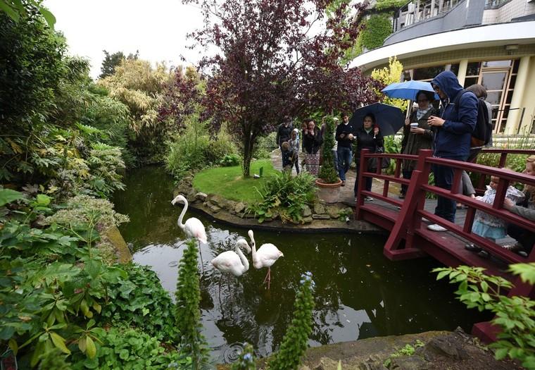 Secret Garden: Hidden Oasis: The Best Green Spaces In London