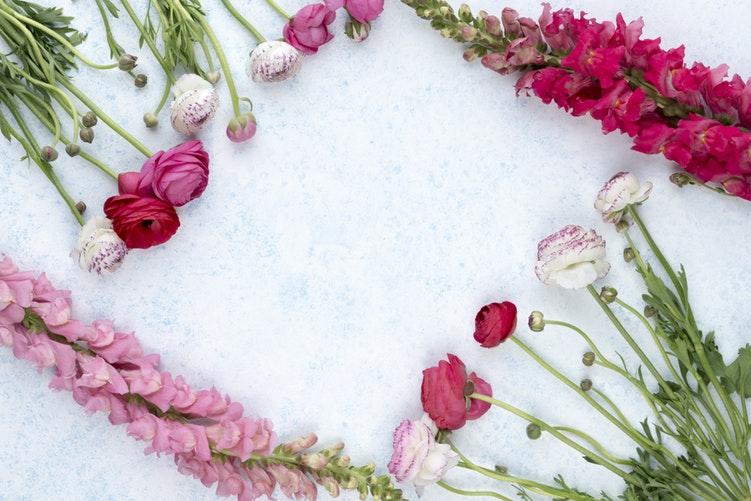 I 10 fiori più belli della primavera per il tuo giardino