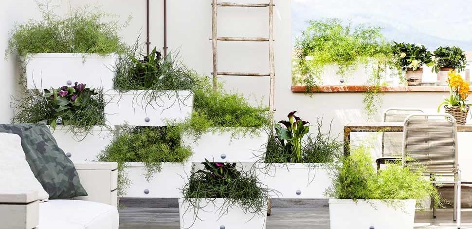 giardino domestico