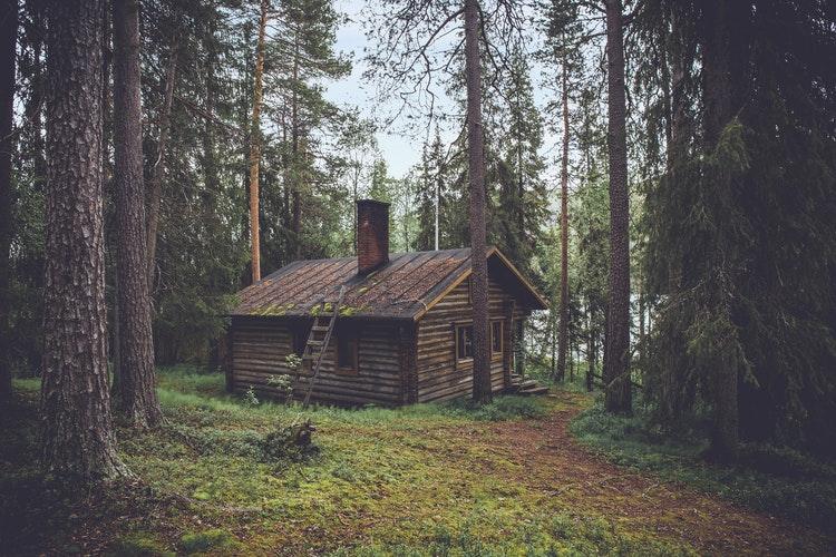 viviendas de madera
