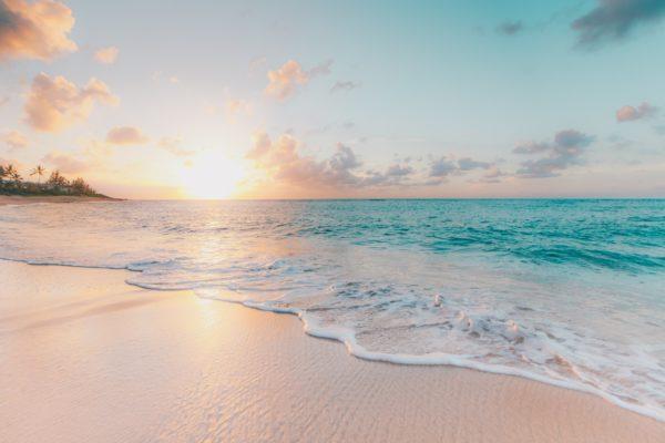 Pisos En La Playa Housfy