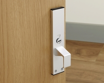 Disabled access handle