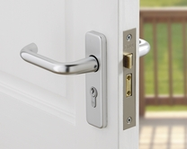 Euro/oval profile cylinder locks