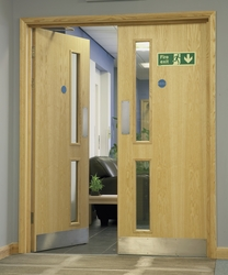 Ash veneer 16G glazed door